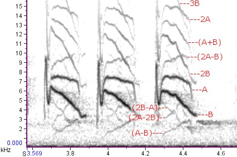 Same spectrogram as above, with labels showing fundamental frequencies (A & B), harmonics (integer multiples of A & B), and heterodyne frequencies (sums and differences of fundamentals and harmonics, in parentheses).